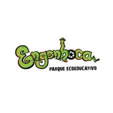 Engenhoca Logo