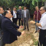 Juízes aderem à causa do Movimento Pró-Árvore e participam de plantio de árvores