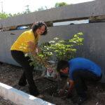 Semana do Meio Ambiente terá programação especial no Fórum Clóvis Beviláqua